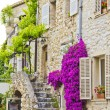 Stock Photo: Provence, south of France