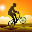 Stock Vector: Silhouette of BMX cyclist practicing on sand in evening background. EPS10.