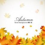 Herfstbladeren achtergrond met ruimte voor uw tekst. EPS 10 — Stockvector