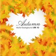 Autumn leaves background with space for your text. EPS 10. - Stock Vector