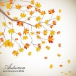 Wektor stockowy : Autumn leaves background with space for your text. EPS 10.