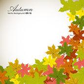 Herfstbladeren achtergrond met ruimte voor uw tekst. eps 10. — Stockvector