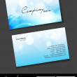 Stock Vector: Professional business cards, template or visiting card set. and