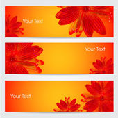 Website banner or header set with floral. EPS 10. — Stock Vector