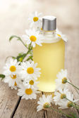 Essential oil and camomile flowers — Stock Photo