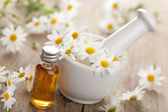 Essential oil and camomile flowers in mortar — Stock Photo