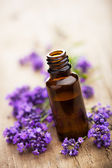 Essential oil and lavender flowers — Photo