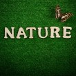 The word nature written on green background — Stock Photo