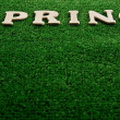 The word spring written on green background — Stock Photo