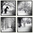Monochrome picture of a winter set - Stock Photo