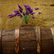 Purple flowers on old barrel - Stockfoto