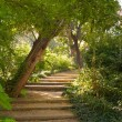 Stair in a beautiful park - Stock Photo