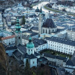 Salzburg city view — Stock Photo #12373539
