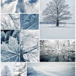 Winter collage — Stockfoto #12374459