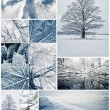 Winter collage — Stock fotografie