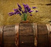 Purple flowers on old barrel — Stock Photo