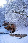 Cave in beautiful winter landscape — Stock Photo