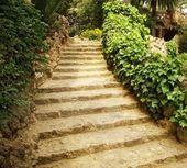 Cesta v zahradě — Stock fotografie