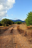 Suumer landscape with rural road in Spain. — Stock Photo