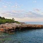 Sunset landscape with coast of the sea. Panorama. — Stock Photo #11981483