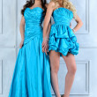Stock Photo: Two beautiful women in long and short evening dresses.