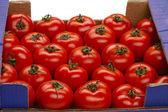 Tomato in a box — Stock Photo