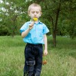 Cute little boy with dandelion — Stock Photo