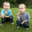 Brothers playing in the meadow — Stock Photo