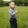 Beautiful cute boy in the park blowing on dandelion in summer ti — Stock Photo