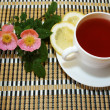 Rose hip tea — Stock Photo #11166087
