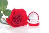 Wedding Ring and Rose, Will you marry me? — Stock Photo