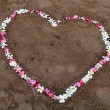Stock Photo: Flower heart on beach