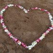 Flower heart on beach — ストック写真 #11963928