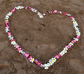 Flower heart on the beach — Foto de Stock