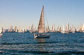 里雅斯特,barcolana 2009 年-的里雅斯特帆船赛 — 图库照片