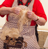 Elderly woman spinning wool — Stock Photo