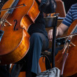 Stock Photo: Orchestra
