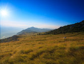 Monte nanos, slovenia — Foto Stock