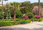 Villa Margherita, Park in Trapani — Stock Photo