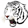 Vector tiger - 