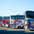 Painted buses — Stock Photo