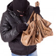 Stock Photo: thief