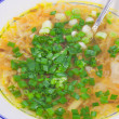 Hot soup with the cut spring onions — Stock Photo