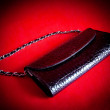 Vanity bag on a red background — Stockfoto