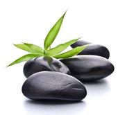 Ciottoli zen. pietra spa e il concetto di assistenza sanitaria. — Foto Stock