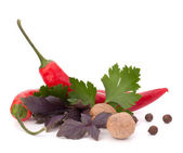 Hot red chili or chilli pepper and aromatic herbs leaves still l — Stock Photo