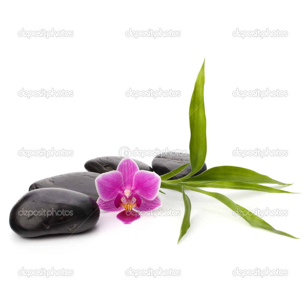 Zen pebbles path. Spa and healthcare concept. — Stock Photo #11526916