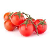 Cherry tomato — Stock Photo