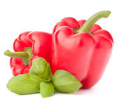 Sweet red pepper and basil leaves still life — Stock Photo