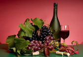 Red wine and grape still-life — Stock Photo